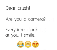 Crush: Dear crush!  Are you a camera?  Everytime | look  at you, I smile.