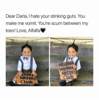 Club, Love, and Darla: Dear Darla, I hate your stinking guts. You  make me vomit. You're scum between my  toes! Love, Alfalfa  HE  HATER  CLUB an iconic movie