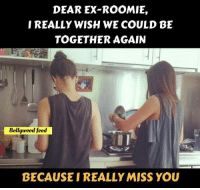 Memes, Bollywood, and 🤖: DEAR EX-ROOMI,  REALLY WISH WE COULD BE  TOGETHER AGAIN  Bollywood feed  BECAUSE I REALLY MISS YOU