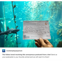 Aquarium, Dears, and Fis: Dear fis  Monterey  aRo the Gest fish Aquarium  eerl orie Fish are  HAWAII  montereybayaquarium  The fishes loved receiving this anonymous postcard from a fan! Send us  your postcards to your favorite animal and we will read it to them!
