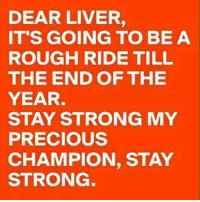 Memes, Precious, and Rough: DEAR LIVER,  IT'S GOING TO BE A  ROUGH RIDE TILL  THE END OF THE  YEAR.  STAY STRONG MY  PRECIOUS  CHAMPION, STAY  STRONG