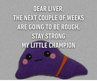 liver: DEAR LIVER,  THE NEXT COUPLE OF WEEKS  ARE GOING TO BE ROUGH,  STAY STRONG  MY LITTLE CHAMPION