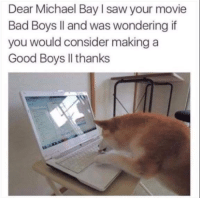 Bad, Bad Boys, and Dank: Dear Michael Bay I saw your movie  Bad Boys ll and was wondering if  you would consider making a  Good Boys Il thanks