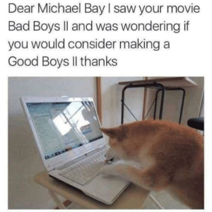 Bad, Bad Boys, and Saw: Dear Michael Bay I saw your movie  Bad Boys ll and was wondering if  you would consider making a  Good Boys Il thanks Good Boys II
