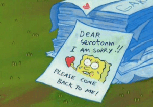 Sorry, Mom, and Back: DEAR  !!  Mom  serotonin  I Am SORRY  PLEASE COME  BACK TO ME!