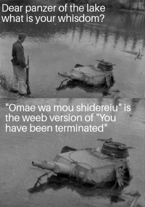 """Reddit, True, and Guess: Dear panzer of the lake  what is your whisdom?  """"Omae wa mou shidereiu"""" is  the weeb version of """"You  have been terminated"""" That's true I guess?"""