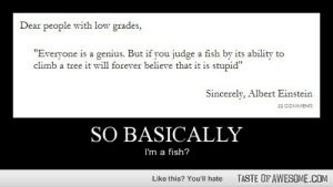 "So Basicallyhttp://omg-humor.tumblr.com: Dear people with low grades,  ""Everyone is a genius. But if you judge a fish by its ability to  climb a tree it will forever believe that it is stupid""  Sincerely, Albert Einstein  22 COMMENTS  SO BASICALLY  I'm a fish?  TASTE OF AWESOME.COM  Like this? You'll hate So Basicallyhttp://omg-humor.tumblr.com"