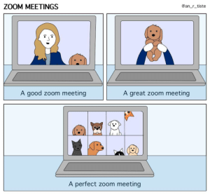 Dear pets (and pet owners), thank you for bringing delight to our video meetings (oc): Dear pets (and pet owners), thank you for bringing delight to our video meetings (oc)