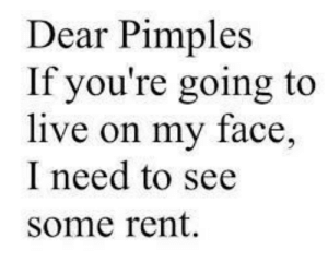 Live, Rent, and Face: Dear Pimples  If you're going to  live on my face,  I need to see  some rent.