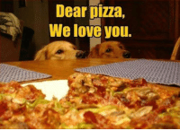 ~The Mighty Pizza: Dear pizza,  We love you. ~The Mighty Pizza