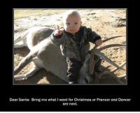 Some non-PC humor for your Christmas Eve:) Enjoy!: Dear Santa: Bring me what I want for Christmas or Prancer and Dancer  are next. Some non-PC humor for your Christmas Eve:) Enjoy!