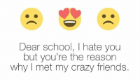 i hate you: Dear school, I hate you  but you're the reason  why met my crazy friends.
