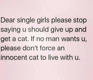 *Tips Fedora: Dear single girls please stop  saying u should give up and  get a cat. If no man wants u,  please don't force an  innocent cat to live with u. *Tips Fedora