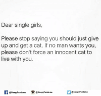 Memes, Panda, and 🤖: Dear single girls,  Please stop saying you should just give  up and get a cat. If no man wants you,  please don't force an innocent cat to  live with you.  @sleepy Pandame  @sleepyPanda.me  @sleepy Panda me