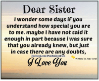 Memes, Doubt, and 🤖: Dear Sister  I wonder some days if you  understand how special you are  to me. maybe I have not said it  enough in part because i was sure  that you already knew, but just  in case there are any doubts,  Facebook.com/PutaSmileonFace  gGove you  written by Jane Craft I love my sister <3 <3