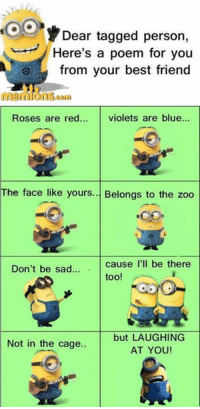 Best Friend, Memes, and Best: Dear tagged person,  Here's a poem for you  from your best friend  01  Roses are red... violets are blue...  The face like yours... Belongs to the zoo  Don't be sad.  too!  but LAUGHING  AT YOU  Not in the cage..