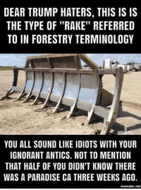 "Ignorant, Memes, and Paradise: DEAR TRUMP HATERS, THIS IS IS  THE TYPE OF ""RAKE"" REFERRED  TO IN FORESTRY TERMINOLOGY  YOU ALL SOUND LIKE IDIOTS WITH YOUR  IGNORANT ANTICS. NOT TO MENTION  THAT HALF OF YOU DIDN'T KNOW THERE  WAS A PARADISE CA THREE WEEKS AG0,  mematic.net But it's so much easier to blame it on climate change!"