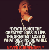 "Memes, Tupac, and 🤖: ""DEATH RS NOT THE  GREATEST LOSS IN LIFE.  THE GREATESTLOSSIS  WHAT DIES INSIDE WHILE  STILL ALIVE  NEVER SURRENDER."" Never Surrender⁉️ 📷 @timkarsliyev . tupac dailydose"