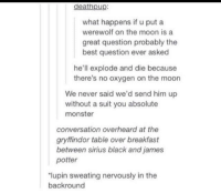 Gryffindor, Monster, and Best: deathpup:  what happens if u put a  werewolf on the moon is a  great question probably the  best question ever asked  he'll explode and die because  there's no oxygen on the moon  We never said we'd send him up  without a suit you absolute  monster  conversation overheard at the  gryffindor table over breakfast  between sirius black and james  potter  lupin sweating nervously in the  backround Asking the real questions here