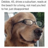 Dank Memes, Suburban, and Madness: Debbie, 45, drives a suburban, reads at  the beach for a living, not mad you lied  to her, just disappointed  ShitheadStGAC (@shitheadsteve_)