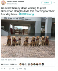 "Dogs, Best, and Forever: Debbie Reed Fischer  @DebbieRFischer  THE  Follow  Comfort therapy dogs waiting to greet  Stoneman Douglas kids this morning for their  first day back. #MSDStrong  YOU WISH TO SEE IN THE WORLD  12:09 PM - 28 Feb 2018  448 Retweets 1,290 Likes  FOREVER  LOGICAL  37448 1.3K <p>The best puppers via /r/wholesomememes <a href=""http://ift.tt/2t0xeY0"">http://ift.tt/2t0xeY0</a></p>"