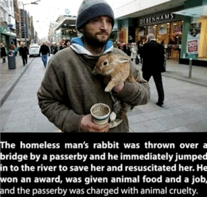 [happy bunny noises]: DEBENHAMS  30  The homeless man's rabbit was thrown over a  bridge by a passerby and he immediately jumped  in to the river to save her and resuscitated her. He  won an award, was given animal food and a job,  and the passerby was charged with animal cruelty. [happy bunny noises]