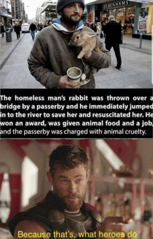 Very wholesome: DEBENHAMS  30  The homeless man's rabbit was thrown over  bridge by a passerby and he immediately jumped  in to the river to save her and resuscitated her. He  won an award, was given animal food and a job,  and the passerby was charged with animal cruelty.  a  Because that's, what heroes do Very wholesome