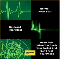 Memes, Phone, and Heart: Deceased  Heart Beat  Bewakoof  Com  Normal  Heart Beat  Heart Beat  When You Touch  Your Pocket And  Don't Feel  Your Phone Do you agree? :P   Revamp your wardrobe with us: http://bwkf.shop/View-Collection