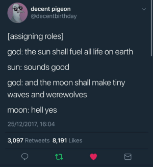 God, Life, and Memes: decent pigeon  @decentbirthday  [assigning roles]  god: the sun shall fuel all life on earth  sun: sounds good  god: and the moon shall make tiny  Waves and Werewolves  moon: hell yes  25/12/2017, 16:04  3,097 Retweets 8,191 Likes positive-memes:wholesome sun and moon