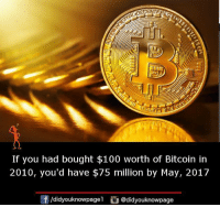 Anaconda, Memes, and Bitcoin: DECENTR  If you had bought $100 worth of Bitcoin in  2010, you'd have $75 million by May, 2017  団/d.dyouknowpagel @didyouknowpage