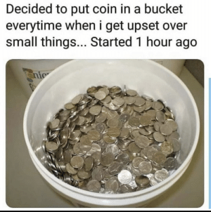 Meirl: Decided to put coin in a bucket  everytime when i get upset over  small things... Started 1 hour ago  nic Meirl