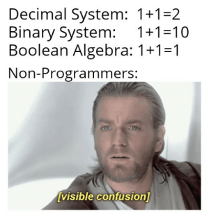 They have no idea: Decimal System: 1+1=2  Binary System:  Boolean Algebra: 1+1=1  1+1=10  Non-Programmers:  [visible confusion] They have no idea