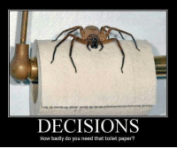 i do what i want: DECISIONS  How badly do you need that toilet paper?