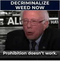 I could really use a weed leaf emoji right now.: DECRIMINALIZE  WEED NOW  S ALL  HA  Prohibition doesn't work. I could really use a weed leaf emoji right now.