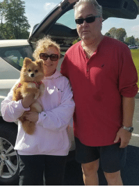 DeeDee is Long Island bound with her new pawrents!  She will be cherished for the rest of her days and we know her bubbly personality will bring her family joy.  Have a safe trip guys and enjoy your new life precious DeeDee..... you deserve the best!: DeeDee is Long Island bound with her new pawrents!  She will be cherished for the rest of her days and we know her bubbly personality will bring her family joy.  Have a safe trip guys and enjoy your new life precious DeeDee..... you deserve the best!