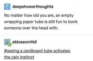 Yet Another Dump?: deepshowerthoughts  No matter how old you are, an empty  wrapping paper tube is still fun to bonk  someone over the head with.  ablossomfell  #seeing a cardboard tube activates  the cain instinct Yet Another Dump?