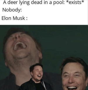 deer  lying  dead  in a  pool:  *exists*  A  Nobody:  Elon Musk: *Instert titel here*