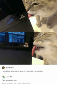 ~Kingslayer  Checkout : Pokémon GO: deershadow  i bet that cat doesn't even game, it's just doing it for attention.  ivaan-ffxiv  Fake gamer cats, ugh  Source: uguused arcat fAKE GAMER CAT ~Kingslayer  Checkout : Pokémon GO
