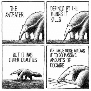 Memes, Cocaine, and Http: DEFINED BY THE  THINGS IT  KILLS  THE  ANTEATER  TS LARGE NOSE ALLOWS  IT TO DO MASSIVE  AMOUNTS OF  COCAINE  BUT IT HAS  OTHER QUALITIES Anteater to cocainesnorter via /r/memes http://bit.ly/2IzL7mR