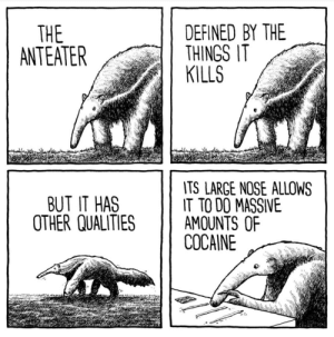 What a big nose you have: DEFINED BY THE  THINGS IT  KILLS  THE  ANTEATER  TS LARGE NOSE ALLOWS  TO DO MASSIVE  AMOUNTS OF  COCAINE  BUT IT HAS  OTHER QUALITIES What a big nose you have