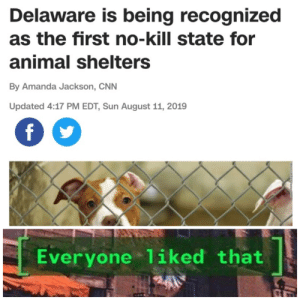 Whats not to like?: Delaware is being recognized  as the first no-kill state for  animal shelters  By Amanda Jackson, CNN  Updated 4:17 PM EDT, Sun August 11, 2019  f  Everyone 1iked that Whats not to like?