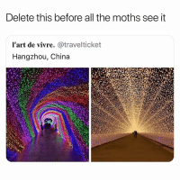 Target, Tumblr, and China: Delete this before all the moths see it  l'art de vivre. @travelticket  Hangzhou, China memeculture69:LAMP?