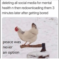 Peace Was Never An Option: deleting all social media for mental  health n then redownloading them 3  minutes later after getting bored  peace was  never  an option