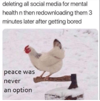 Bored, Memes, and Snapchat: deleting all social media for mental  health n then redownloading them 3  minutes later after getting bored  peace was  never  an option Snapchat: DankMemesGang