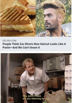 Panini time by GoCommitDeathpacito_ MORE MEMES: DELISH.COM  People Think Zac Efron's New Haircut Looks Like A  Panini-And We Can't Unsee It  PRING  PRING  Hey, panini head,  are you listening to me? Panini time by GoCommitDeathpacito_ MORE MEMES