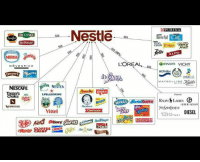 So you can better organize your boycotts: DELISSIO  Nestlé  MOVE N PICK  RUOUR  Dreyer  ESCAFEA  Choice  NESPRESSO  SPELLEGRINO  Vittel  Henry!  Nestle  Craton  Gerber  Chel mate  ac  L'OREAL  Tatty  URINA  Cat  Beneful  ancy  ALPO  GARNIeR VICHY  BIOTHERM  OMBRELLE  MAYBELLINE  DIESEL  STELLA  MOCARTNEY So you can better organize your boycotts