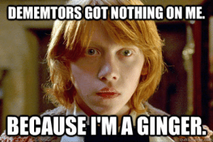 Dememtors got nothing on me. Because I'm a Ginger. - Ron Weasley ...: DEMEMTORS GOT NOTHING ON ME  BECAUSE TM AGINGER  quicknehe.com Dememtors got nothing on me. Because I'm a Ginger. - Ron Weasley ...