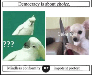 https://t.co/mBwHegbDSE: Democracy is about choice  Delet this  ???  Mindless conformity or  impotent protest https://t.co/mBwHegbDSE