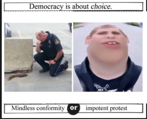 https://t.co/9IFEUfUnKi: Democracy is about choice  Mindless conformity or  impotent protest https://t.co/9IFEUfUnKi