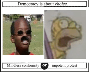 https://t.co/nnWROzm7Q7: Democracy is about choice.  Mindless conformity or  impotent protest https://t.co/nnWROzm7Q7